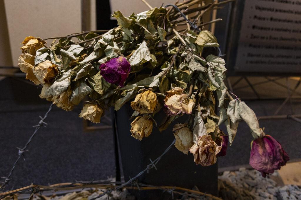 Kytice růží v Expozici Karla Kryla